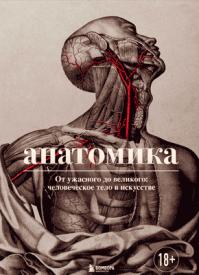 Анатомика. Джоанна Эбенштейн