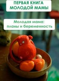 Молодая мама: планы и беременность. Илья Мельников