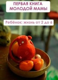 Ребёнок: жизнь от двух до 6. Илья Мельников