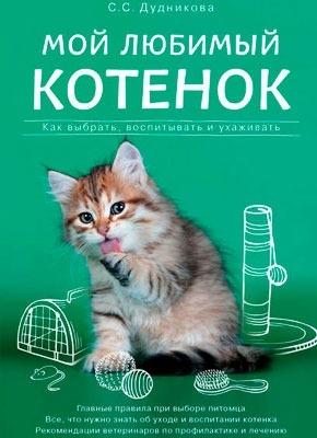 Мой любимый котенок. Как выбрать, воспитывать и ухаживать. Татьяна Гольнева